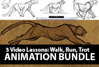 animation lessons four leg walk cycle