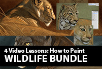 wildlife art lesson bundle aaron blaise