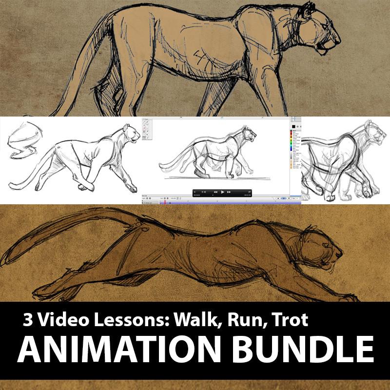 4-Leg-Animation-Lesson-Bundle