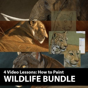 Wildlife-Digital-Painting-Bundle