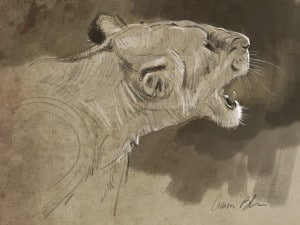 Aaron Blaise Animal Art