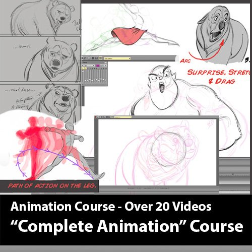 Animation Course Training and Tutorials