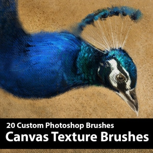 Canvas-Texture-Product-template