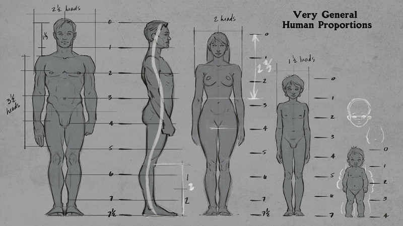 Figure anatomy drawing