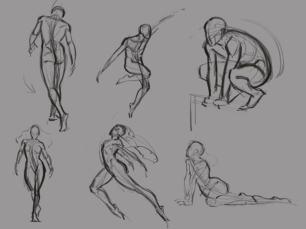 Force Character Design From Life Drawing Pdf Free : How to figure drawing tutorial human anatomy lessons