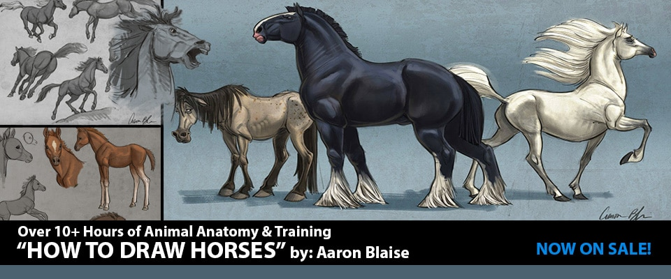How To Draw Horses Lessons