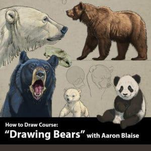 bear-product-image