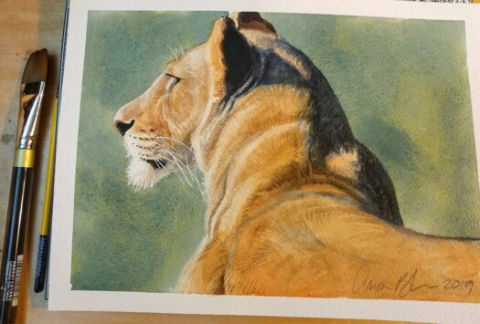 Animal Painting in Watercolor by Aaron Blaise
