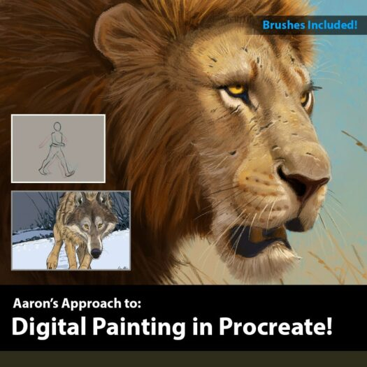 how to draw in procreate